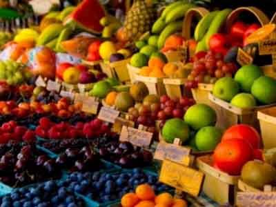 Ricerca Frutticole